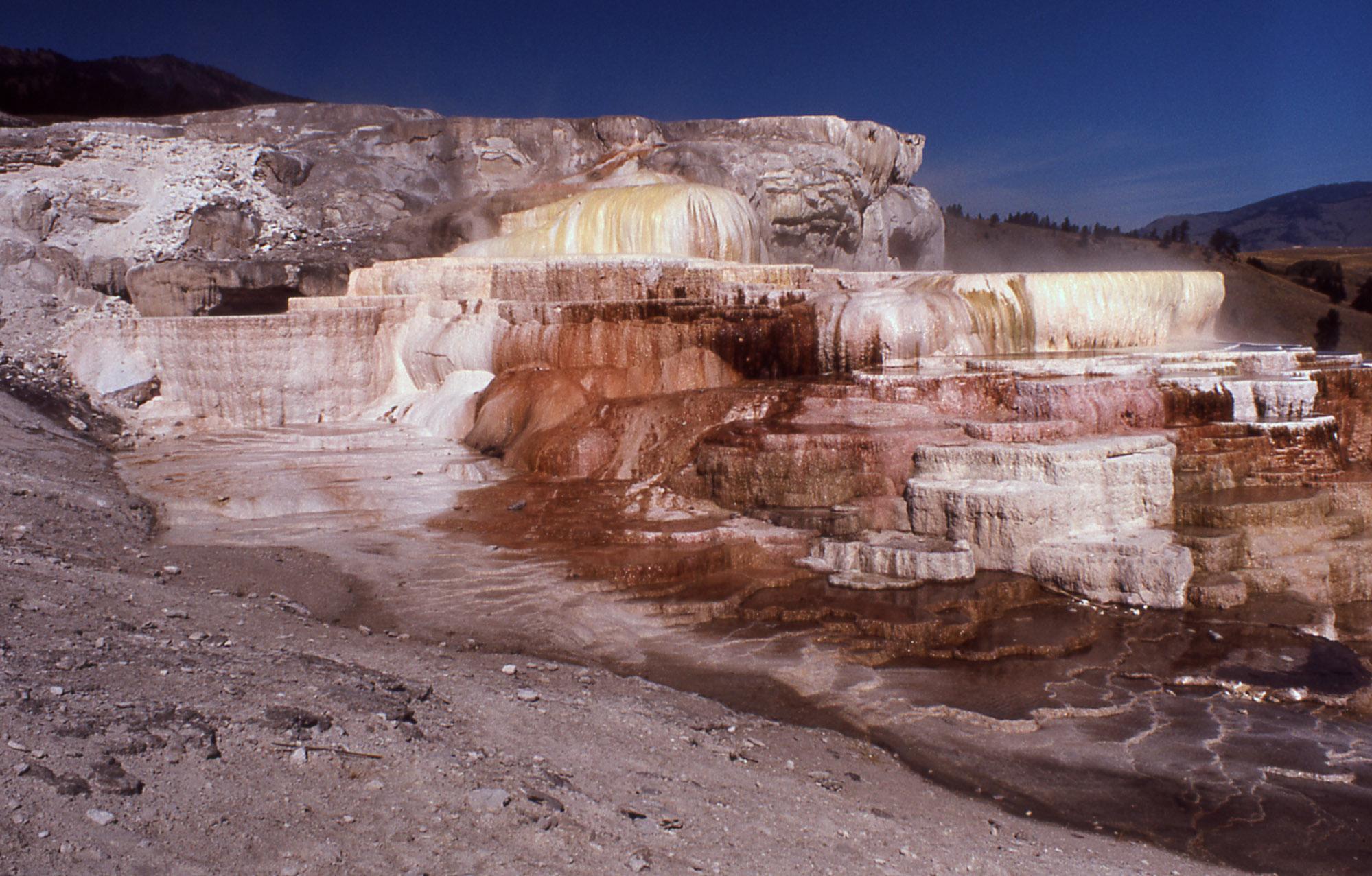 Yellowstone Digital Slide File