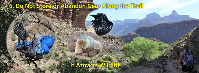 Do not store or abandon gear along the trail. It attracts animals.