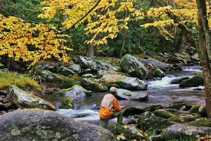 https://i0.wp.com/www.nps.gov/grsm/planyourvisit/images/Fishing-Little-River-bielenberg.jpg