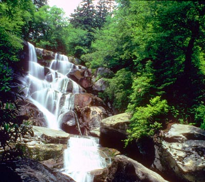 Smoky Mountains Fall Wallpaper Ramsey Cascades Great Smoky Mountains National Park U S