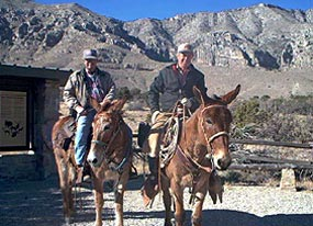 Wallpapers For Desktop Fall Colors Horseback Riding Guadalupe Mountains National Park U S