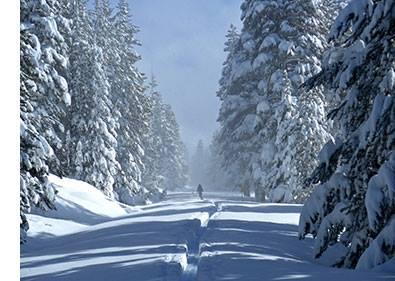 Update for February 15, 2017 - Yosemite National Park (U.S. ...