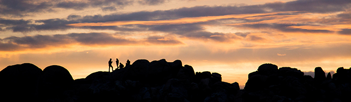 Desert sunset at Jumbo Rocks Campground, Joshua Tree NP. Photo by Brad Sutton/NPS
