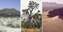 Things To Do Mojave National Preserve US National