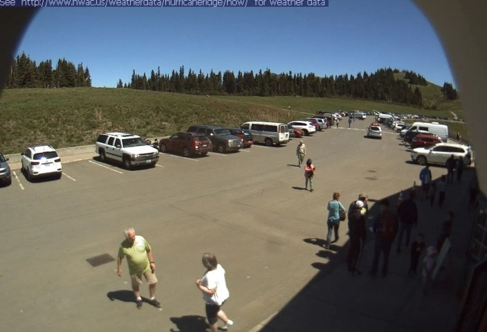 Hurricane Ridge Parking Lot Webcam