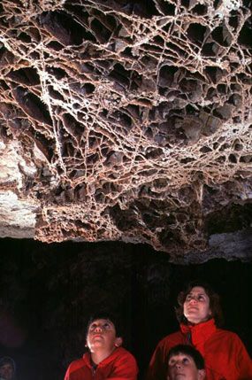 "Boxwork - a rare rock formation, or ""speleothem"""