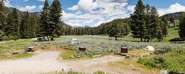 Slough Creek Campground is a first-come, first-served site in Yellowstone National Park.