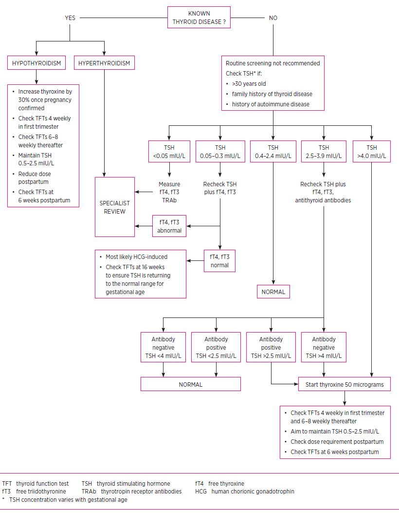 medium resolution of thyroid management in pregnancy
