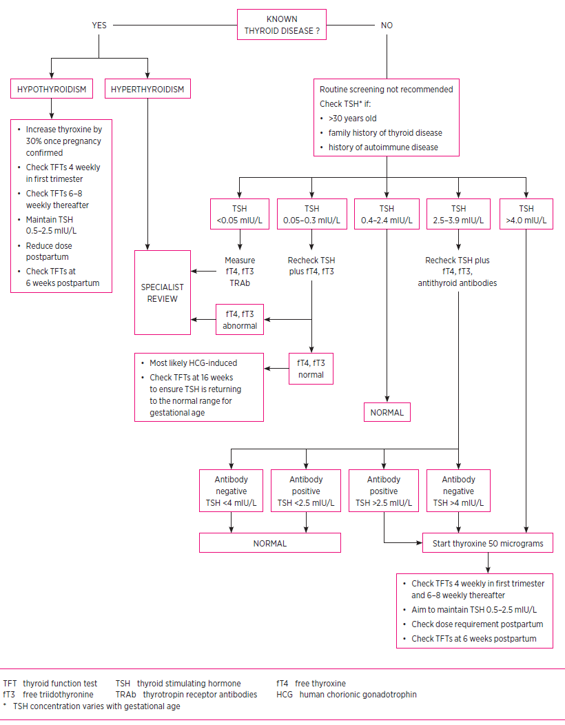 hight resolution of thyroid management in pregnancy
