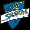 logo_Storm-FC