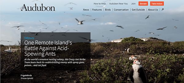 Audubon 2015