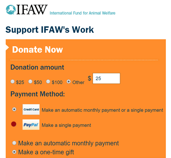 IFAW 8