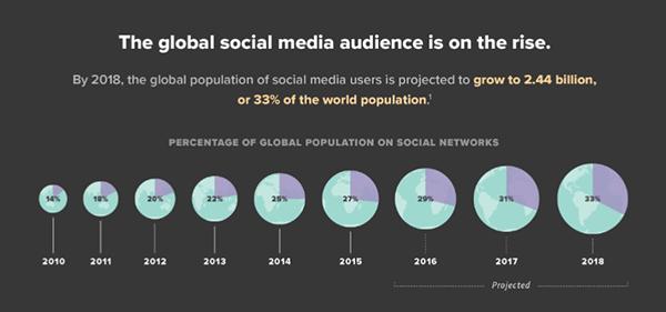 global social media audience
