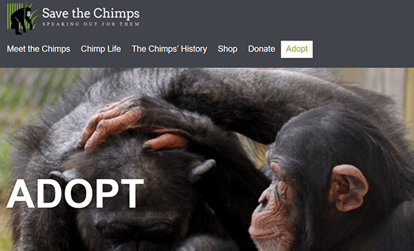 chimps