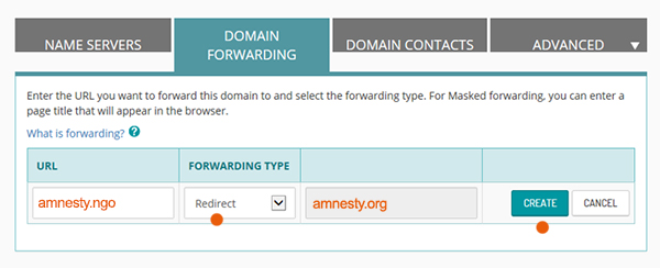 domain-forwarding-2