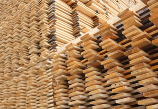 15 forest products and their uses · 1. Forest Products And Applications