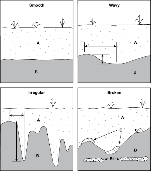horizon diagram soil formation of ear label test ssm ch 3 examination and description profiles nrcs soils examples topography classes for boundaries adapted from schoeneberger