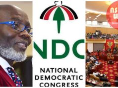 Blam ndc for insults of parliament - Gabby okyere darko