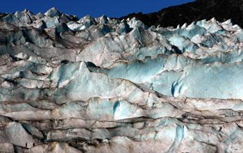 Scientists Unlock Record of Ecosystem Changes Frozen in