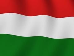 Tłumacz polski węgierski