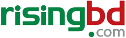 seo experts bangladesh risingbd