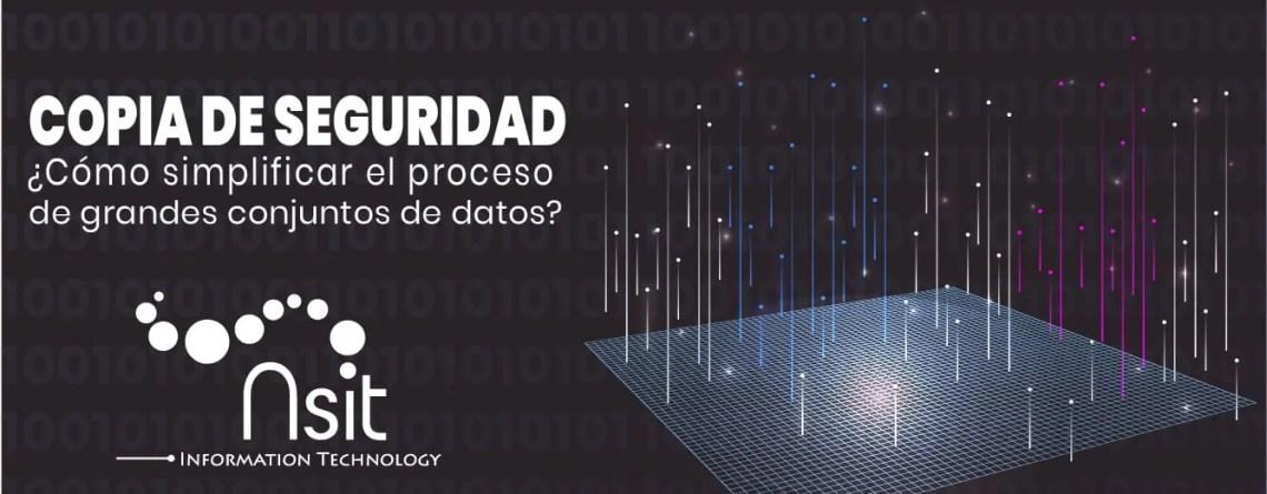 Copia de Seguridad cómo simplificar el proceso de grandes conjuntos de datos Nsit