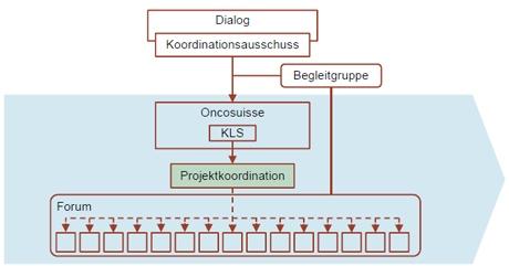 grafik-aufbau-projektorganisation_1_klein