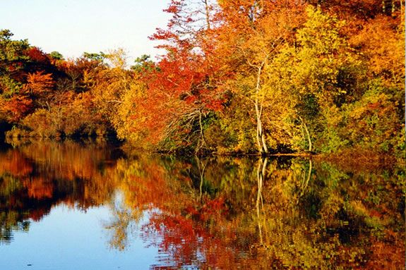 New England Fall Wallpaper Historic Fall Foliage Pontoon Boat Tour 171 North Amp South