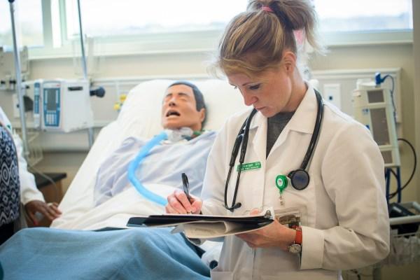 Rn Bsn Online Nursing And Allied Health Norfolk