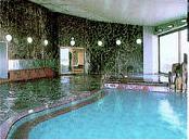 溫泉かけ流しの宿 |関東(栃木・群馬・神奈川)│日本旅行の旅館・ホテル予約