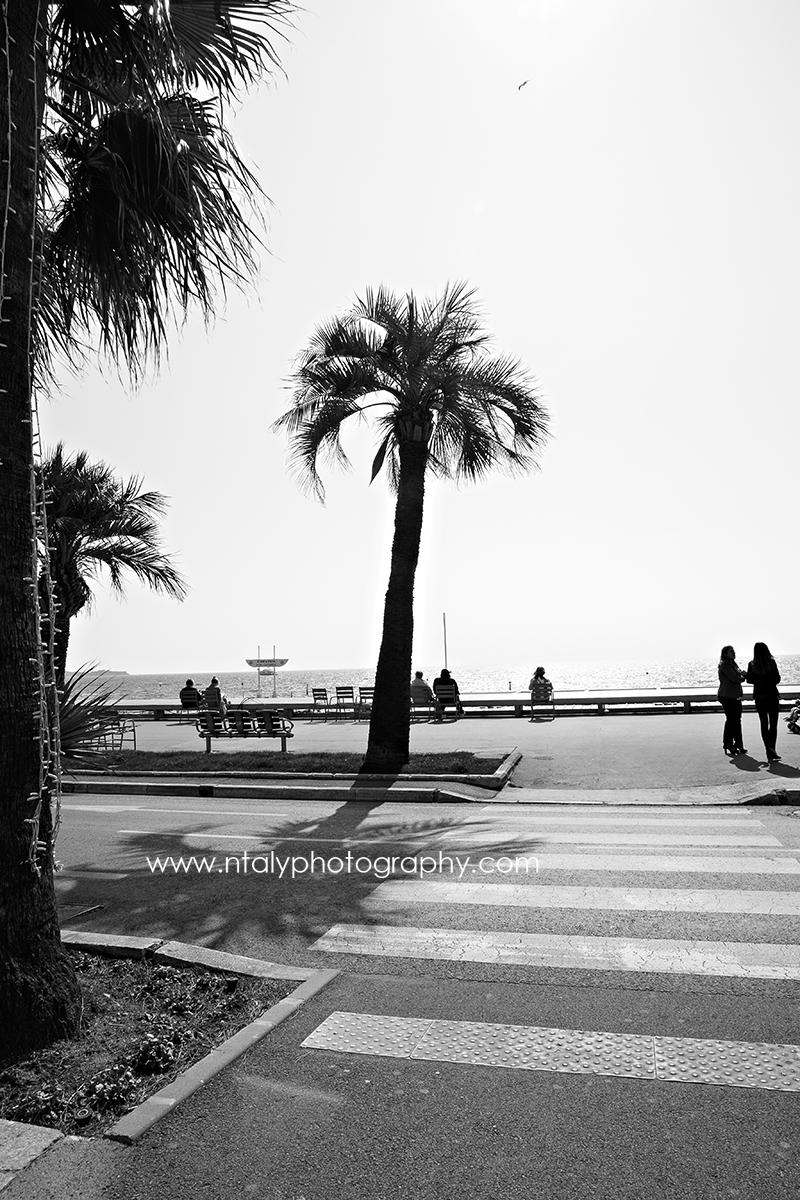 photographies noir et blanc la croisette cannes le carlton boutiques luxe  Ntaly photography