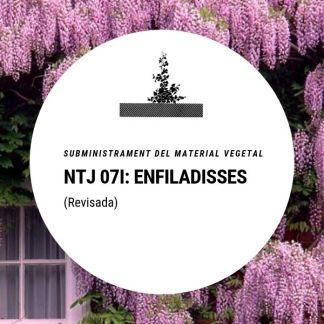 NTJ 07I Plantes enfiladisses (revisada)