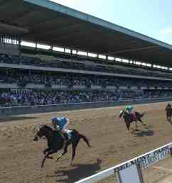belmont park reaccredited by ntra safety integrity alliance [ 3500 x 2387 Pixel ]