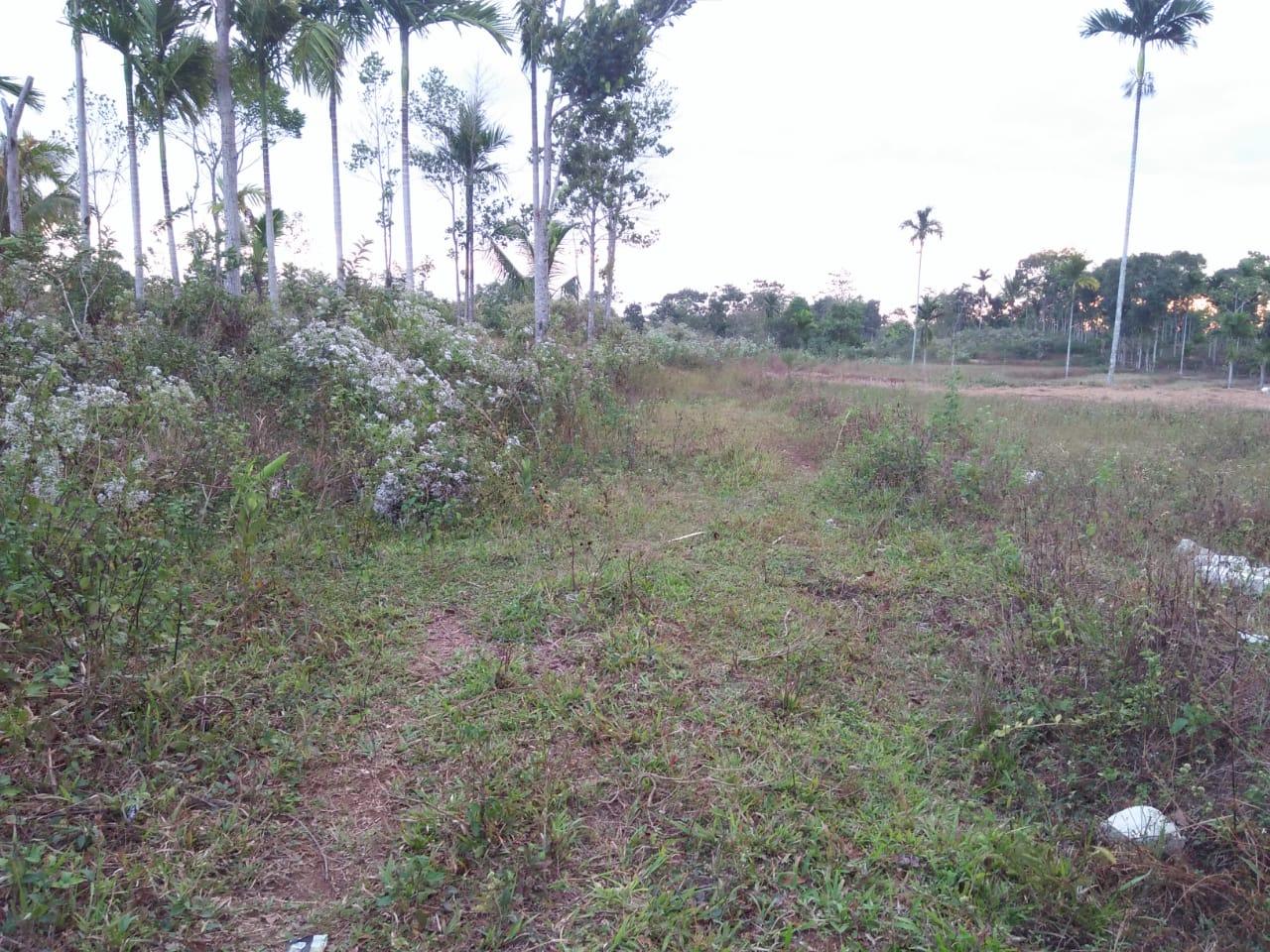 Pengerjaan Jalan di Desa Kabali Dana Tanpa LPJ ke BPD