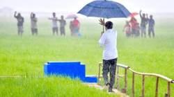 Tinjau Lahan Pertanian, Jokowi Janjikan Bendungan dan Sumur Bor untuk Sumba Tengah
