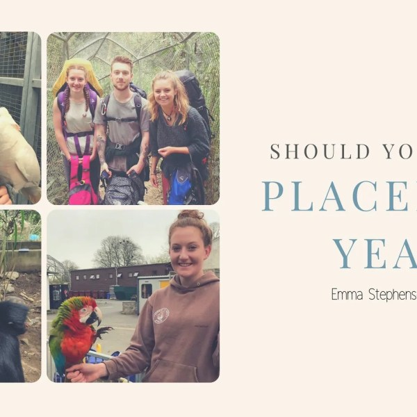Are you considering a placement year? Emma Stephenson's tips!
