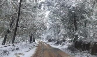 Sierra del Nayar / Nevadas