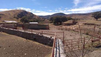 Ranchos-Balleza-9