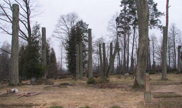 Kokus Matkules kapsētā nozāģē, lai vieglāk kopt kapus