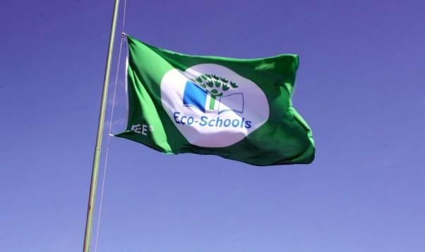 Noskaidroti Ekoskolu Rīcības dienu 2020 konkursa uzvarētāji. To vidū ir arī Irlavas pamatskola