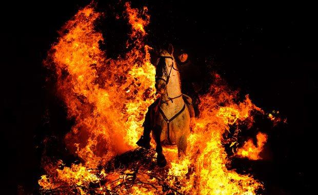 Svētku brīvdienās ugunsdzēsēji izglābj zirgu, govi, teļus, kazas, cūkas un vistas