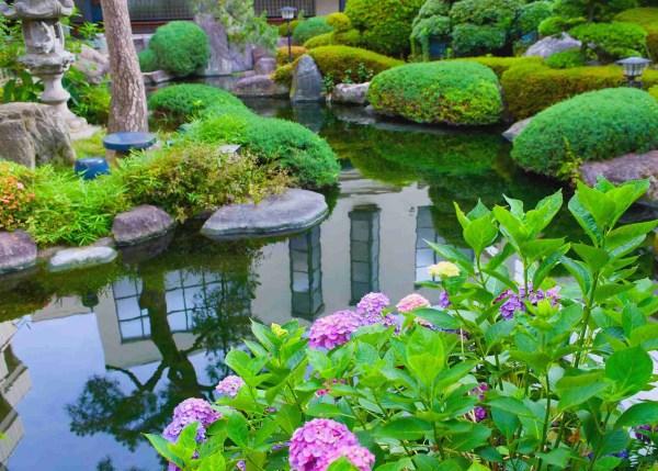 water gardens - nualgi ponds
