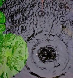 mini acid rain diagram [ 1600 x 1200 Pixel ]