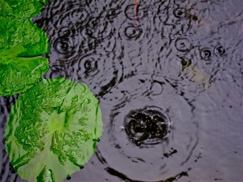 small resolution of mini acid rain diagram