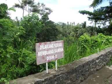 Profibido tirar basura (Bali)