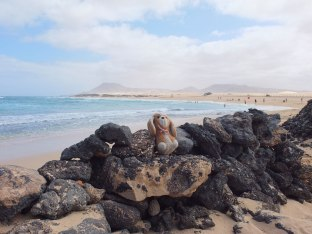 playa!!! - Fuerteventura - España