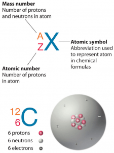 neon atom diagram spal fan wiring atomic number mass density of nuclear power proton