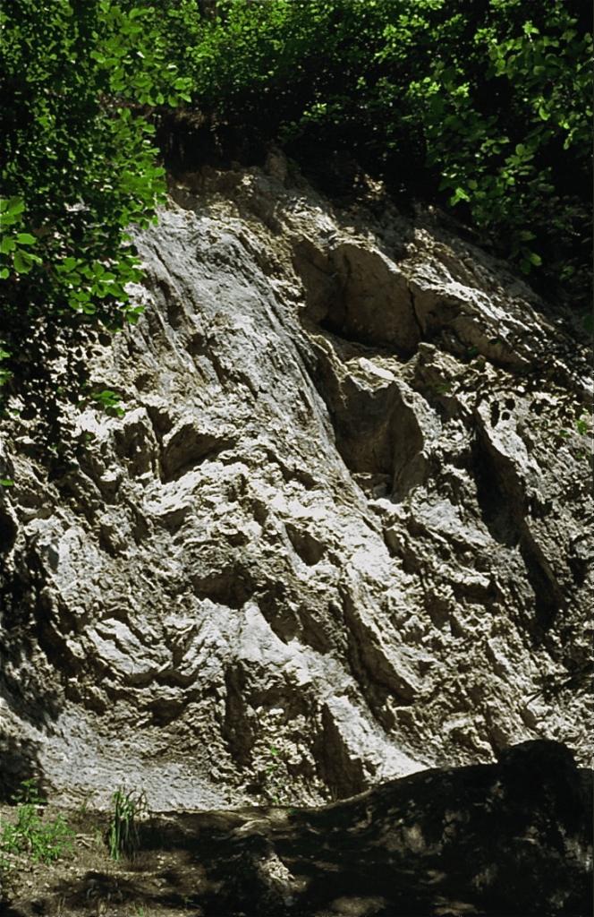 Verlassene Gipsgrube an der Staffelegg (Aargauer Faltenjura) mit stark gefalteten Schichten. Gips (chemisch CaSO4* 2H2O) wurde bis weit ins 20. Jahrhundert in zahlreichen Gruben und Grübchen im Jura als Rohstoff ausgebeutet und zur Verbesserung des Bodens und als Baustoff genutzt. In der geologischen Tiefe tritt Gips in seiner wasserfreien Form als Anhydrit auf (chemisch CaSO4) auf. Er wird in industriell größerem Maßstab als Zuschlag zu Zement abgebaut. Am Ende der 1960er und am Anfang der 1970er Jahre wurden in der Schweiz Anhydritgruben und vermutete Vorkommen dieses Gesteins in der Tiefe der Gipsaufschlüsse als Standorte für Endlager für schwach radioaktive Abfälle erkundet. Stollenaufnahmen und Sondier Bohrungen wurden namentlich in der Grube Felsenau und an der Wandflue (beide in der Nähe von Leibstadt im Tafeljura) und im Val Canaria (bei Airolo) durchgeführt. Die Option wurde aber um 1978 aufgegeben. Es handelt sich um einen interessanten Fall in Zusammenhang mit der Frage des Ressourcenkonfliktes.