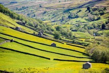 Yorkshire Dales National Park - Swaledale