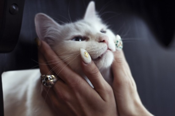 White Cat Hands Nails Cafe Montreal Twins